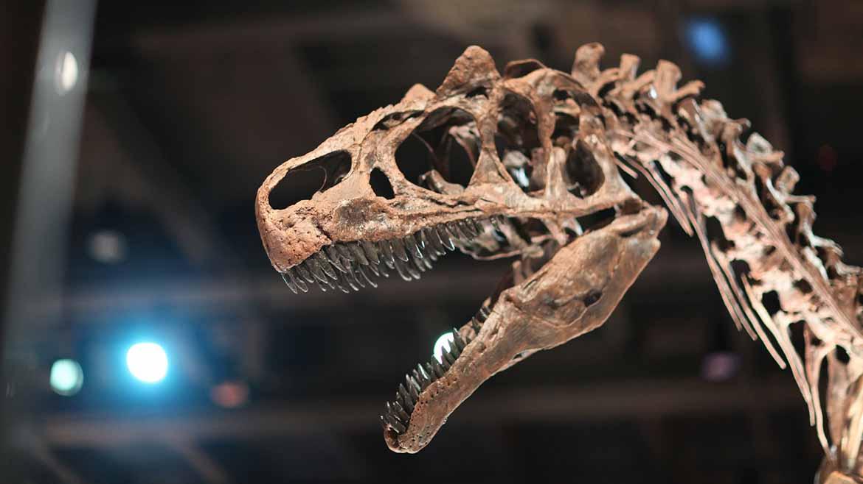 dinossauro-1170x658